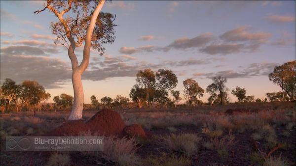 Nova-Australias-First-4-Billion-Years-BD_01