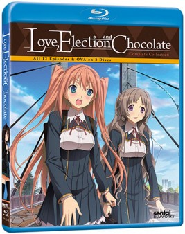 love-election-chocolate-bluray-cover