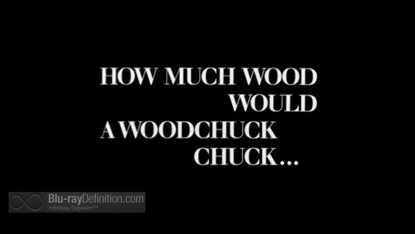How-Much-Wood-Would-A-Woodchuck-Chuck-UK-BD_2