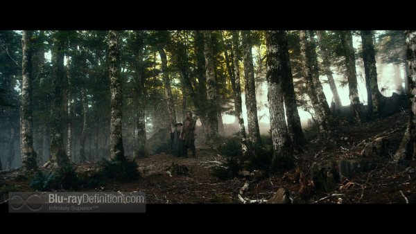 The-Hobbit-Desolation-of-Smaug-Extended-BD_04
