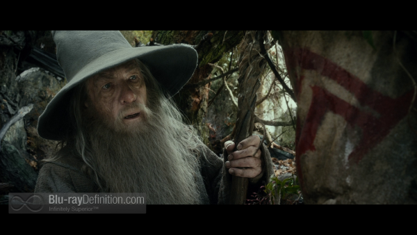The-Hobbit-Desolation-of-Smaug-Extended-BD_06