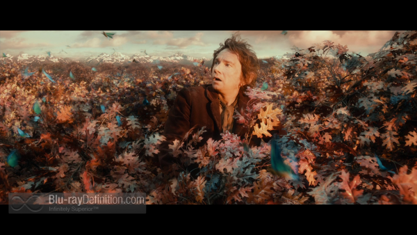 The-Hobbit-Desolation-of-Smaug-Extended-BD_08