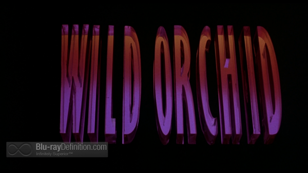 Wild-Orchid-BD_02