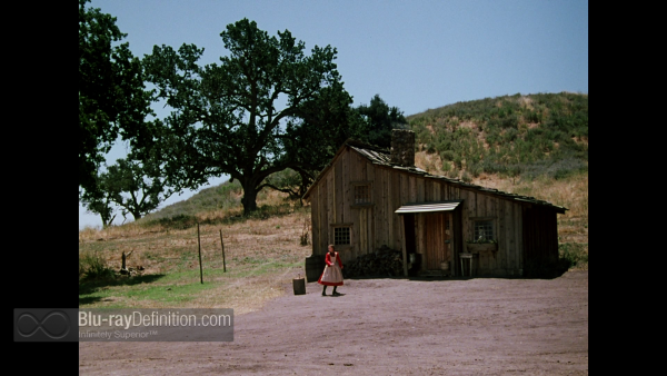 Little-House-on-the-Prairie-DRE-S6-BD_08