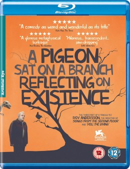 pidgeon-sat-on-a-branch-uk-bluray-cover